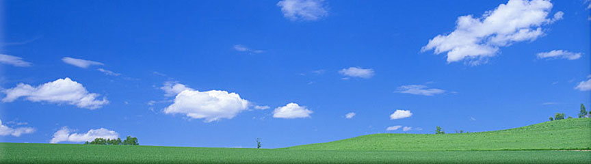 Image of Blue sky and Green field